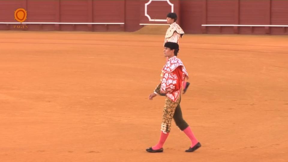 Vídeo de la novillada en la Real Maestranza Sevilla 15 de Junio de 2017