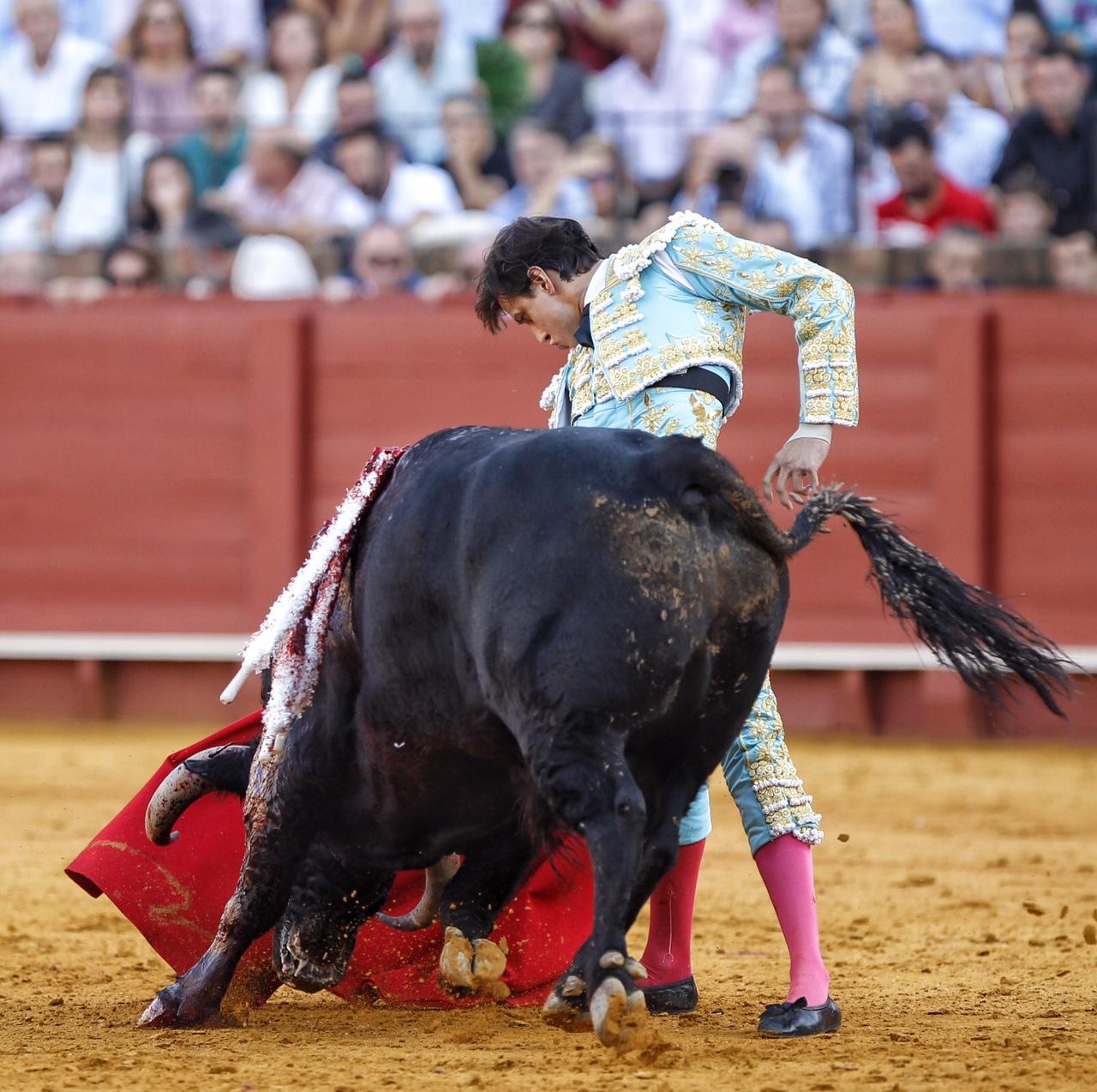 Talavante succeeds in closing San Miguel and Rafael Serna gets hurt