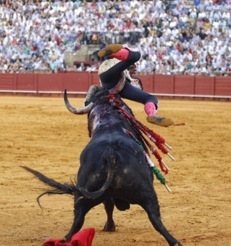 Talavante triunfa en el cierre de San Miguel y Rafael Serna resulta herido